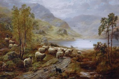 Sheep by a Scottish Loch